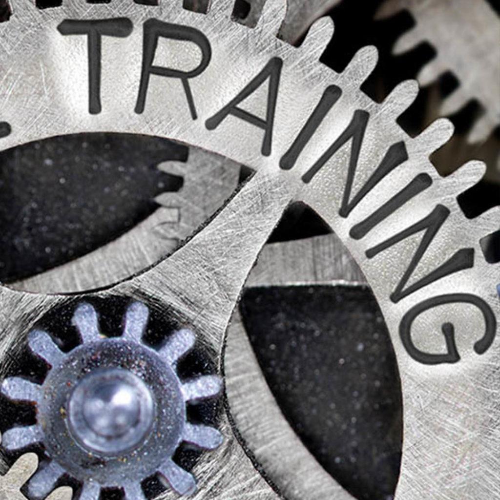 Trainingen Buiten de Lijntjes Communicatie